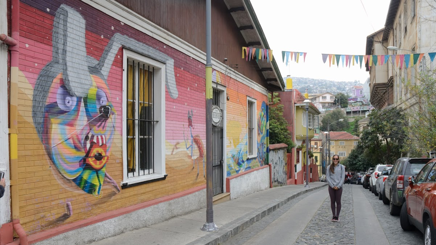 student standing in front of mural in streets of Chile