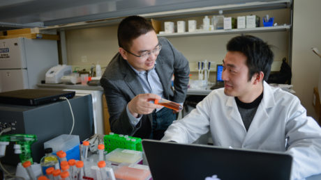 Students work in the lab with Dr. Zhen Zu on Centennial Campus.