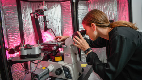 A faculty member from NC State works on research
