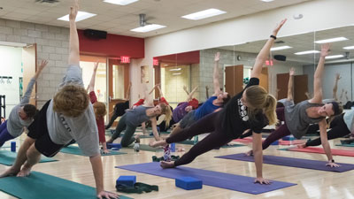 A group of people participate in a yoga session