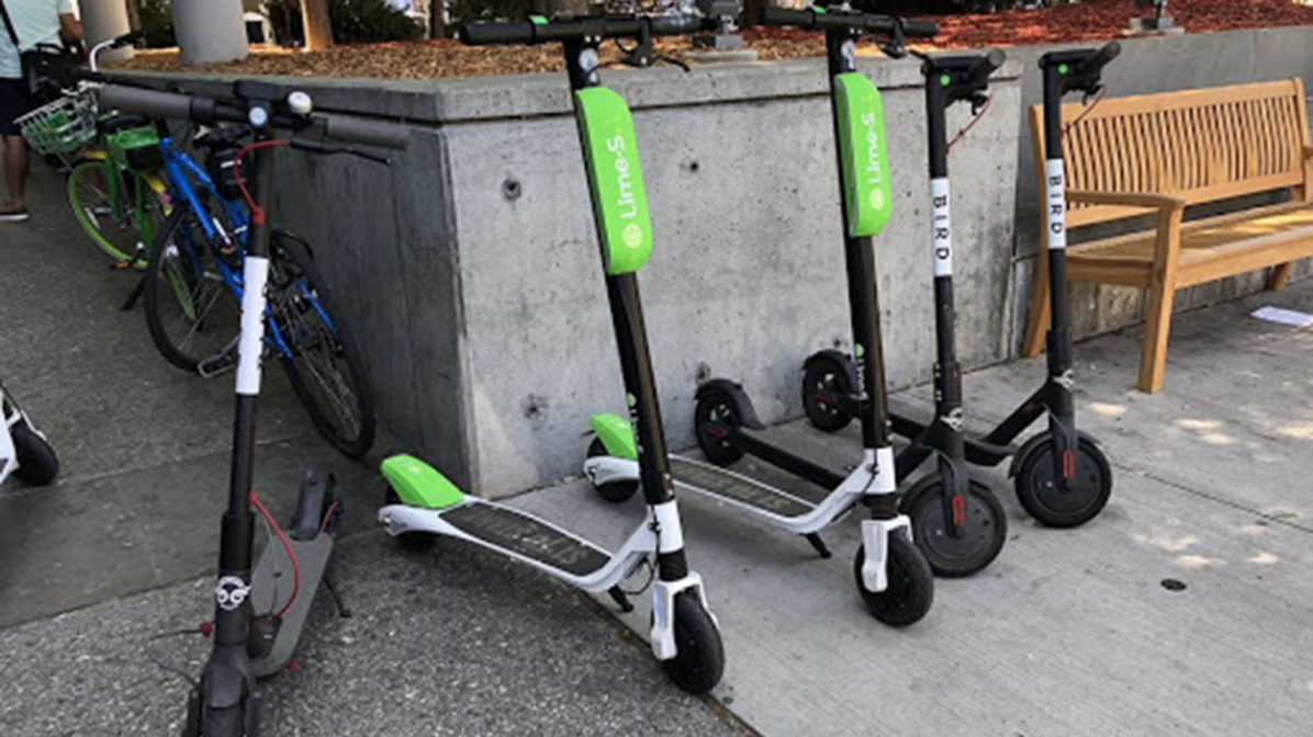 Electric scooters from Bird and Lime