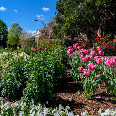 Spring flowers decorate the entrance to Holladay Hall. Photo by Becky Kirkland.