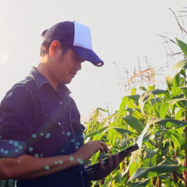 a farmer in a crop field with a tablet