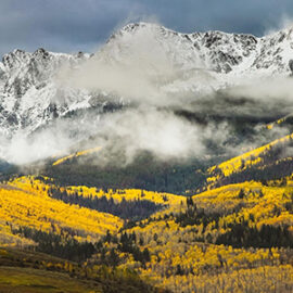 view of aspen trees and mountians